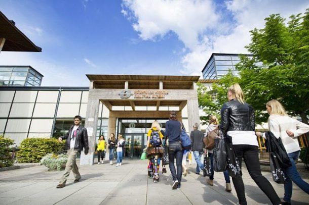University of Sheffield Undergraduate Merit Scholarship