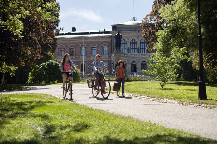 University of Surrey Undergraduate Financial Aid In the UK